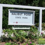 halibut point feat
