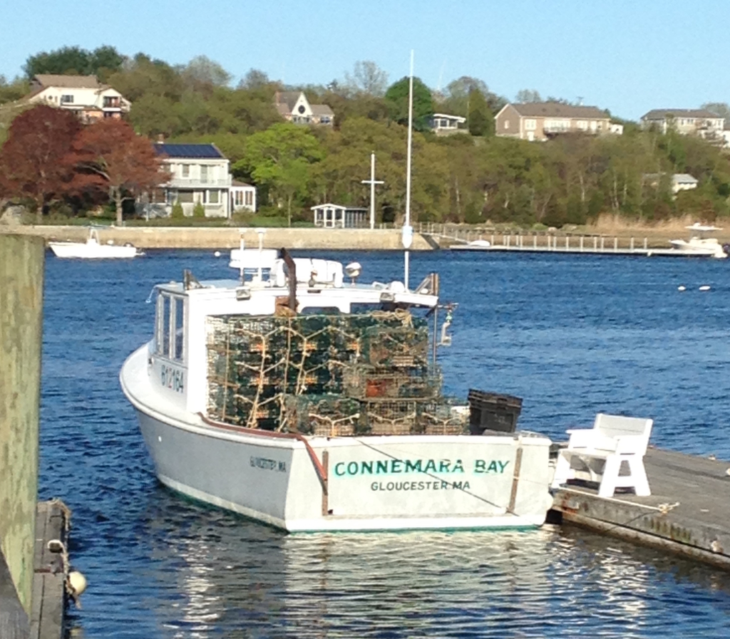 Lobster Tours, Lobster Tour Gloucester