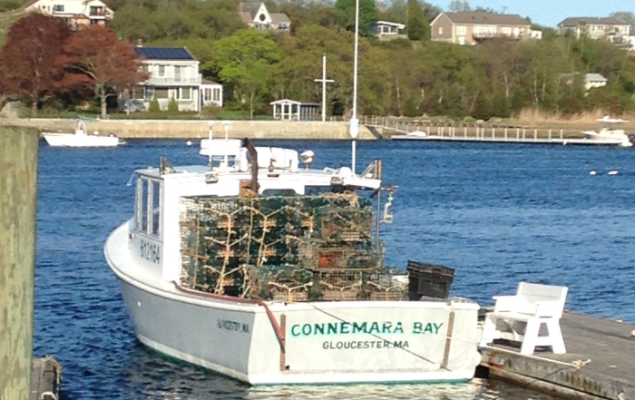 Deep sea fishing charters connemara bay gloucester ma for Deep sea fishing gloucester ma