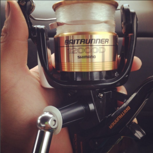 shimano baitrunner striper fishing reel