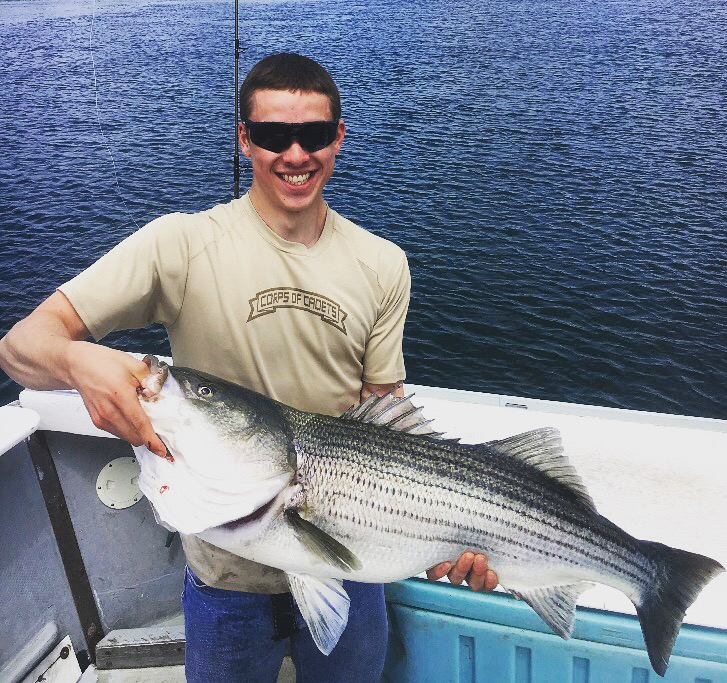 huge striped bass