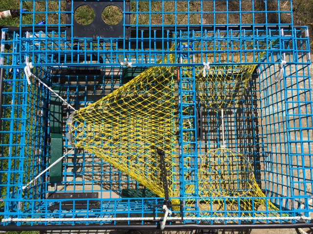 A Lobster Trap