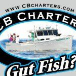 Connemara Bay Fishing Charters